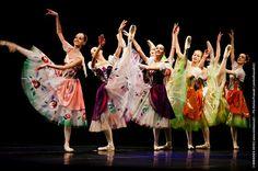 Photograph Dancing Flowers by Enrico Frascati on Bolshoi Ballet, Ballet Tutu, Ballet Dance, Tutu Costumes, Ballet Costumes, Ballet Performances, Ballet Photos, Dance Academy, Ballet Class