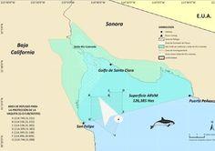 Mar de Cortez México