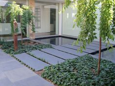 Bluestone #pavers might look nice set in pea gravel or bluestone chip as pathway within allee; or alternate option would be varying sizes...