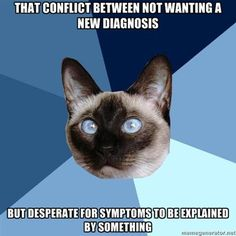 Yes! I'm in the middle of that now. :) Chronic Illness Memes