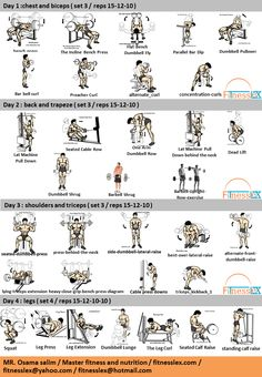 Gym Workout Program For Beginners