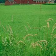 Hobby Farm Tax Deductions | eHow