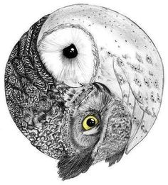 owl ying-yang for side tatoo Buho Tattoo, I Tattoo, Owl Tattoos, Tatoos, Tattoo Bird, Monkey Tattoos, Tattoo Animal, Tattoo Mermaid, Dark Tattoo