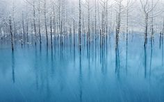 """Blue Pond & First Snow Biei in Hokkaido,Japan. This photo will become the wallpaper from """"New OS X-Mountain Lion"""". http://en.rocketnews24.com/2012/06/20/the-story-behind-the-beautiful-photo-of-the-new-macbook-mountain-lion-os/ http://osxdaily.com/2012/06/12/15-beautiful-new-wallpapers-from-os-x-mountain-lion/"""