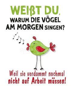 168 Besten So Isses Bilder Auf Pinterest Accounting Humor