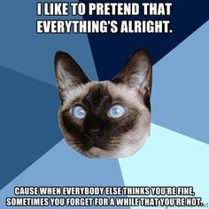 Chronic Illness Cat | I like to pretend that everything's alright. Cause when everybody else thinks you're fine, sometimes you forget for a while that you're not.