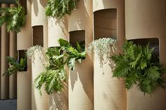 Australian design studio Foolscap unveiled a green pop-up creative space in Sydney made from recyclable cardboard tubes. Pop Up, Tube Carton, Community Space, Cardboard Tubes, Cardboard Playhouse, Cardboard Crafts, Rooftop Garden, Cafe Design, Design Design
