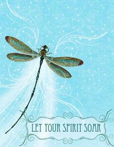 Dragonfly quote, Let your spirit soar. Prophetic art.