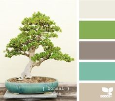 bonsai hues--I always love a hint of green= life.