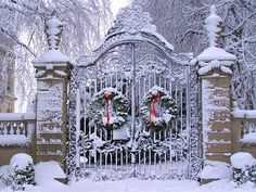 Old-Fashioned Winter Christmas Scenes | Wildflowers: Old Fashioned Christmas