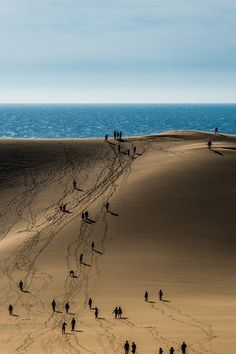 the undeniable draw of sand and surf - very powerful