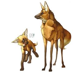 illustration, animal, coyote, fox. Dump by E_a_s_y Erika | InspireFirst