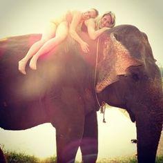 Sexy Women riding bareback barefoot in bikini on an Elephant in the Jungle/Sexy Frauen reiten sattelos barfuß im bikini auf einem Elefant im Dschungel . elefantenreiten | Search Instagram | instidy.com - Instagram Online Viewer