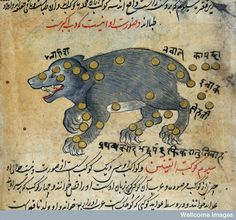 Constellations of Ursa Major, detail, from                              …