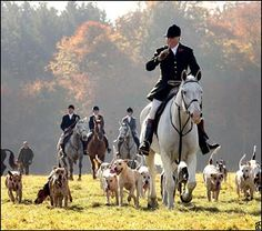 Fox hunting with Prince Charles and Sons at The Beaufort Hunt. Dog Psychology, English Country Manor, Tally Ho, British Countryside, Fox Hunting, Old Money, The Fox And The Hound, Kai, Horse Photography