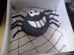 Cheeky spider