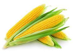 kukorica (1).jpg (553×415)