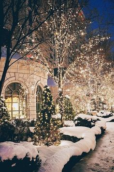 Cozy Seasons