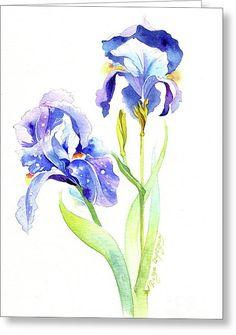 Iris Blue Greeting Card by Darya Tsaptsyna