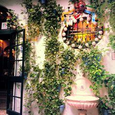El PIMPI Granada Andalucia, Andalusia, Malaga City, Wall Flowers, Restaurant, Instagram Posts, Inspiration, Travel, Beautiful