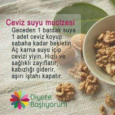 Ceviz – Sandviç tarifi – The Most Practical and Easy Recipes Fitness Diet, Health Fitness, Diet Recipes, Healthy Recipes, Alternative Medicine, Natural Medicine, Healthy Weight Loss, Health And Beauty, Wood Crafts