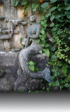 Mermaid Sirena statue, Legends of Guam USA Chamorro Recipes, Chamorro Food, Northern Mariana Islands, Island Life, Seaside, Side Garden, Garden Gate, Guam, Celebrity Photos