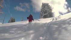 Siegi Tours Ski Holiday Adventure Salzburg Ski Holidays, Salzburg, Alps, Skiing, Tours, Adventure, Fun, Outdoor, Friends