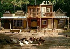 Build a giant coop and make the while front side look like multiple old establishments!