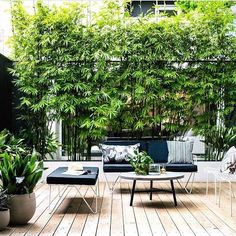 💚 98 outdoor living space design faboulous tips how to create the perfect outdoor space 90 Outside Living, Outdoor Living, Balkon Design, Rustic Pergola, Small Courtyards, Recycled Garden, Outdoor Spaces, Outdoor Decor, Terrace Design