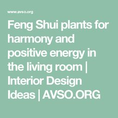 Feng Shui plants for harmony and positive energy in the living room  |  Interior Design Ideas | AVSO.ORG