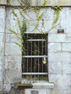 Door Signs, Prison, Grass, Layout, Outdoor Structures, Windows, Doors, Architecture, Image