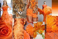 Orange_Spring Mood Boards, Orange, Spring