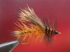 Stimulator fly. Learn how to tie the Stimulator fly fly. This is one of color combination of Stimulator fly. I think that pictures enough describe every step...