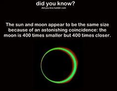 More proof of how awesome and genius GOD is! The More You Know, Good To Know, Did You Know, Astronomy Facts, Space And Astronomy, Wow Facts, Wtf Fun Facts, Cool Science Facts, Unique Facts