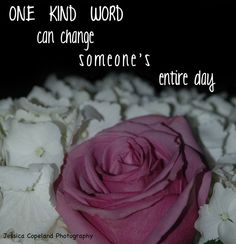 ONE KIND WORD can ch