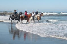 Mendocino, CA. I'm a romantic, and horseback riding along a beach is still near the top of my bucket list Mendocino Coast, Riding Horses, Places In California, Famous Landmarks, North Coast, Horseback Riding, Dream Vacations, Outdoor Activities, Adventure Time