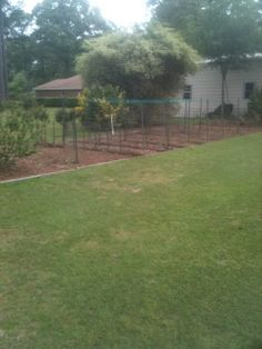 The landscape timber border defines the garden space, yet ties the garden into the overall landscape scheme.