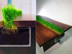 Garden tables from repurposed wood, planter table designs and DIY inspiration for home made furniture. Low lounge coffeeetables with vegetation under glass.