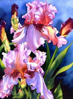 Floral Art by Nancy Collins, Watercolorist. Watercolour Painting, Watercolor Flowers, Watercolours, Iris Painting, Painting & Drawing, Iris Art, Iris Flowers, Whimsical Art, Beautiful Paintings