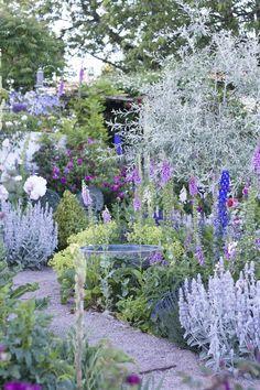 Oh, oh, nu bloeit het zo veel in onze tuin dat je bijna duizelig wordt in ... - #bijna #bloeit #dat #duizelig #Het #je #nu #onze #tuin #veel #wordt #ZO