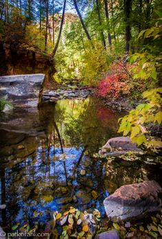Oak Creek Canyon is a river gorge located along the Mogollon Rim in northern Arizona between the cities of Flagstaff and Sedona. The canyon ...