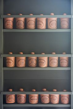 The bespoke larder spice rack has everything to hand in this Classic Middleton Kitchen. Victorian Townhouse, Victorian Kitchen, Mews House, Kitchen Pantry, Kitchen Ideas, English Kitchens, Rustic Kitchen Design, Architecture Awards, Bespoke Kitchens
