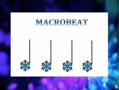 Microbeat/Macrobeat signs with snowflakes  From MLT, easy as Do Re Mi:   A Music Learning Theory classroom