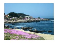highway 1 signs to pacific grove | Pacific Grove Transportation - Taxi, Train, Bus & Airport Tips