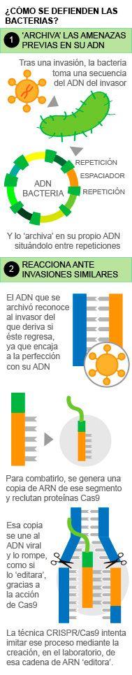 El Gobierno tumbó en 2008 el proyecto que inspiró el premio Princesa de Asturias | Salud | EL MUNDO
