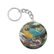 Macaw Basic Round Button Keychain
