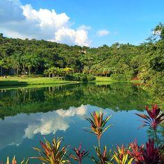 Hoje o #viagemjovem conheceu #inhotim na cidade de #brumadinho! Um onibus da Saritur sai da rodoviaria diariamente ate la por volta de R$50,00/ida e volta. Nas quartas feiras a entrada é gratuita e por R$20,00 vc pode usar os carrinhos de transporte dentro do museu que te levam de uma exposicão a outra. Se vc tiver um dia livre em Minas não deixe de conhecer! 🌺🌳🌸🌿 Golf Courses, River, Outdoor, Road Maps, Strollers, Museum, City, Destinations, Entryway