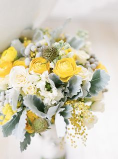 gorgeous yellow blooms | Sweet Tea Photography
