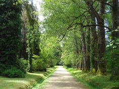 Viaje a Valdivia by leo.prie.to, via Flickr Sidewalk, Country Roads, Google, Country Houses, Woods, Cities, Architecture, Photos, Side Walkway