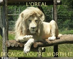 L'OREAL...Because You're Worth It